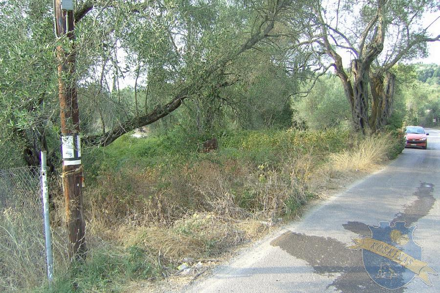Agricultural Land Plot For Sale - CORFU, CORFU