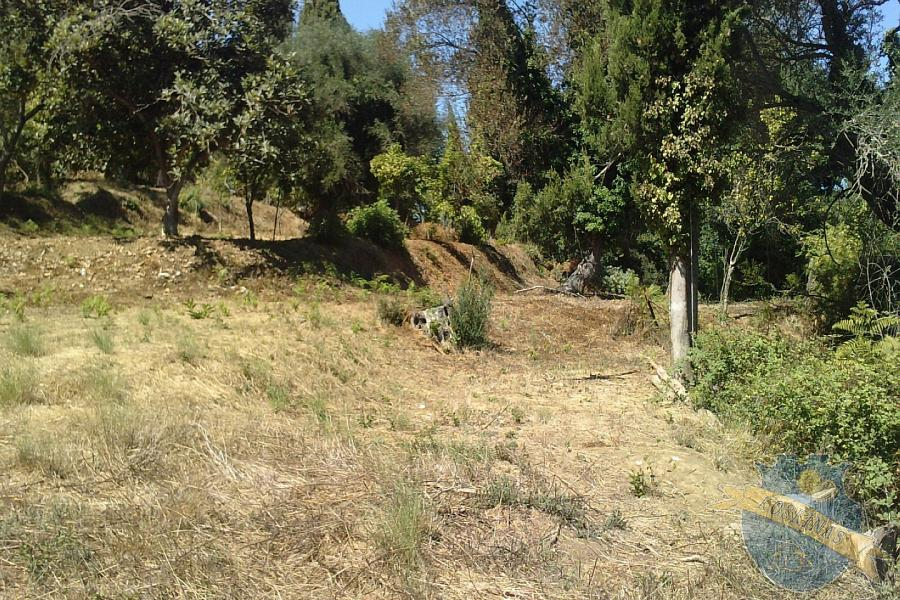 Land For Sale - CORFU, CORFU