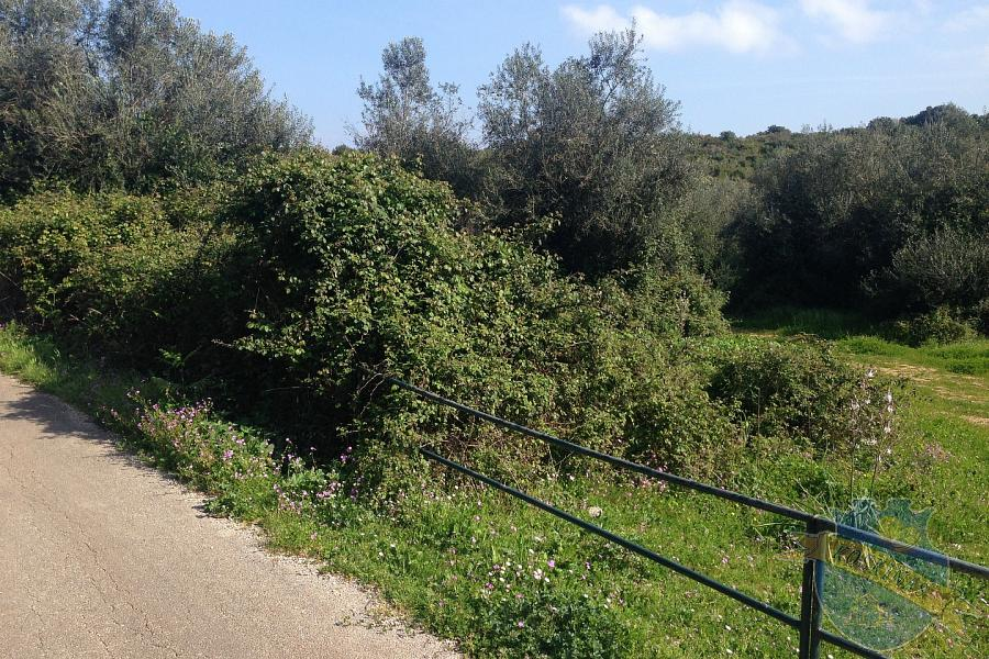 Land For Sale - VORIA KERKYRA, CORFU