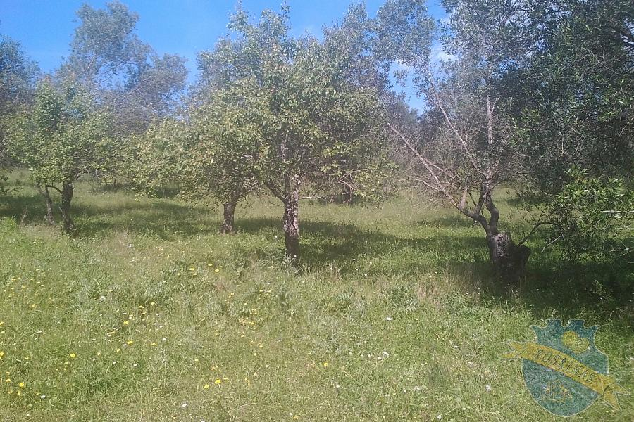 Land For Sale - GIANNADES, CORFU